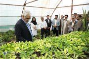 بازدید دکتر طهرانچی از بخشهای مختلف دانشگاه آزاد اسلامی واحد قائم شهر